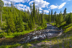 Wenig Firehole-Fluss nahe den mystischen Fällen Lizenzfreies Stockbild