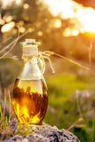Wenig Flasche mit Olivenöl mit Blendenfleck und Sonne beleuchten Lizenzfreies Stockbild