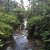 Wenig Fluss Stockbild