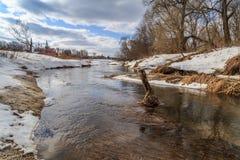 Wenig Fluss ist bereits vom Eis frei Stockfoto