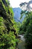 Wenig Fluss unter den großen Bergen Lizenzfreie Stockbilder