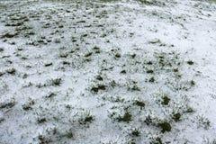 Wenig grünes Gras unter Schnee und Eis lizenzfreie stockfotografie