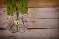 Wenig grünes Herz in den Händen Lizenzfreies Stockbild