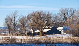 Wenig Grasland-Bauernhof im Winter Stockfotos