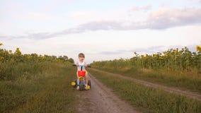 Wenig hübsches Mädchen, das ihr Fahrrad auf eine Straße mit Sonnenblumen reitet Das Kind lernt, ein Fahrrad und Lächeln zu reiten stock video
