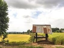 Wenig Hütte auf dem Reisgebiet Lizenzfreie Stockfotografie