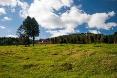 Wenig Haus auf einem Hügel Lizenzfreies Stockbild
