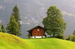 Wenig Haus und das grüne Feld mit dem Berg als Hintergrund am regnerischen Tag Grindelwald, die Schweiz Lizenzfreie Stockbilder