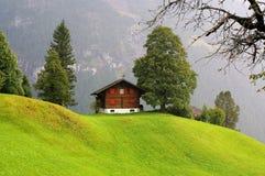Wenig Haus und das grüne Feld mit dem Berg als Hintergrund am regnerischen Tag Grindelwald, die Schweiz Lizenzfreies Stockfoto