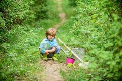 Wenig Helfer im Garten Pflanzen der Blumen Wachsende Anlagen K?mmern Sie sich um Anlagen Junge mit Bew?sserungsdose Kleines Junge stockbilder