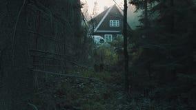 Wenig Holzhauskabine im tiefen Wald, kalter Ton stock video