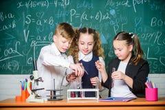 Wenig Kinderin der schule Lektion Kleinkinder, die Chemie im Schullabor lernen chemie Zur?ck zu Schule kursteilnehmer lizenzfreies stockbild