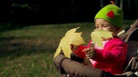 Wenig Mädchen, das in einem Spaziergänger sitzt und mit gelben Ahornblättern spielt stock video footage