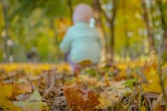 Wenig Mädchen, das im Park an einem schönen Herbsttag sitzt lizenzfreie stockfotos