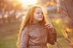 Wenig Mädchen, das im Sonnenlicht jungen grünen Baumast hält stockbild