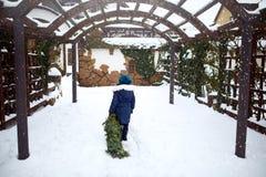 Wenig Mädchen trägt herein einen Weihnachtsbaum zu ihrem Haus am Schneefallwintertag Kind schleppt grünen Fichten- oder Tannenbau stockbild