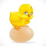 Wenig nettes gelbes Karikaturküken, das auf einem Ei sitzt Stockfotografie