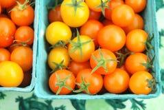 Wenig orange und gelbe Bissengrößentomaten Stockfoto