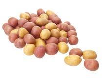 Wenig patatoes Stockfotos