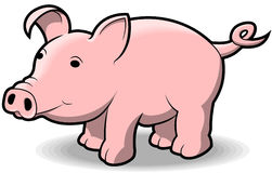 Wenig Piggy Stockfotografie