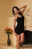 Wenig schwarzes Kleid Stockbilder