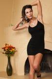 Wenig schwarzes Kleid Lizenzfreie Stockbilder