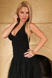 Wenig schwarzes Kleid Stockbild