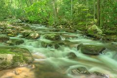 Wenig Stony Creek, Giles County, Virginia, USA stockfotografie