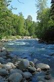 Wenig Susitna-Fluss Lizenzfreie Stockfotografie