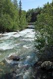 Wenig Susitna-Fluss Lizenzfreie Stockbilder