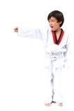 Wenig Taekwondo-Jungenkampfkunst stockfotografie