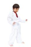 Wenig Taekwondo-Jungenkampfkunst lizenzfreie stockbilder