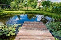 Wenig Teich stockbilder