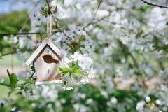 Wenig Vogelhaus im Frühjahr mit Blütenkirschblume Kirschblüte Lizenzfreies Stockfoto