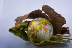 Wenig vorbildliche Kugel gesetzt zwischen zwei Herbstlaub Lizenzfreies Stockbild