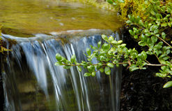 Wenig Wasserfall Lizenzfreie Stockbilder