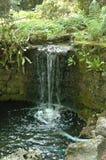 Wenig Wasserfall Stockfoto