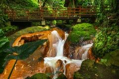 Wenig Wasserfall im Park mit Brücke Lizenzfreie Stockfotos