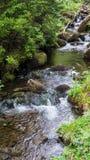Wenig Wasserfall im schwarzer Waldfluß lizenzfreie stockbilder
