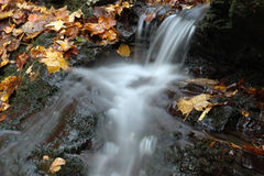 Wenig Wasserfall mit bunten Blättern Stockbild