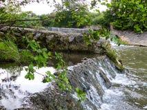 Wenig Wasserfall um Natur lizenzfreie stockbilder