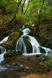 Wenig Wasserfall unter dem Baumschatten Lizenzfreie Stockbilder