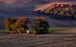 Wenig weiße Kapelle schmiegte sich in den Bäumen im Fall an StBarbara-Kapelle Kyjov Tschechische Republik Lizenzfreie Stockbilder