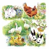 Wenige flaumige nette Aquarellentlein, -hühner und -hasen mit nahtlosem Muster der Eier auf weißem Hintergrund vector Illustratio Stockbilder