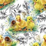 Wenige flaumige nette Aquarellentlein, -hühner und -hasen mit nahtlosem Muster der Eier auf weißem Hintergrund vector Illustratio Stockbild