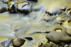 Wenige Fluss-Stromschnellen golden Stockfotografie