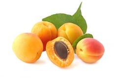 Wenige ganze Aprikosen und Hälfte mit dem Zweig lokalisiert auf Weiß Stockfotos