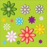 Wenige große und kleine Blumen auf grünem Hintergrund Stockbilder