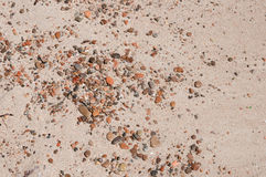 Wenige Kiesel im Sand Lizenzfreie Stockbilder
