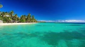 Wenige Palmen über tropischer Lagune stock video